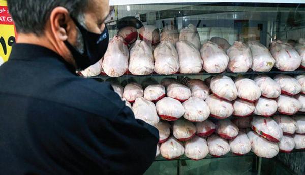 قیمت مرغ به محدوده 23 هزار تومان رسید ، فرایند نزولی ادامه دارد