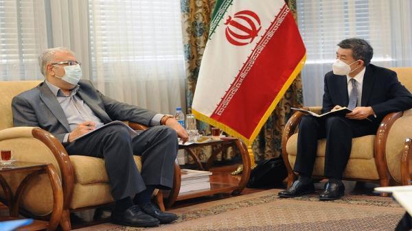وزیر نفت با معاون بخش خاورمیانه شرکت ملی نفت چین ملاقات کرد